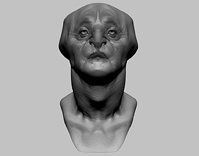 Fantasy Creature Head v7 3D model