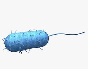 Bacteria laboratory 3D model