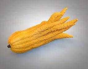 3D asset Buddhas hand Fruit