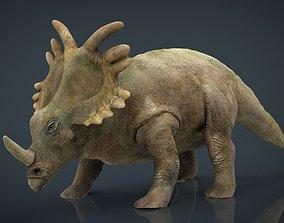 Triceratops 3D model herbivorous