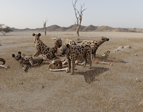 3D asset low-poly Hyena