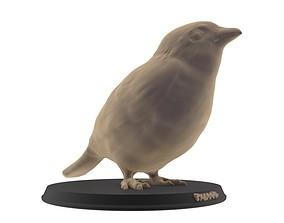 Sparrow Printable
