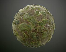 Mossy Lake Landscape Seamless PBR Texture 3D model