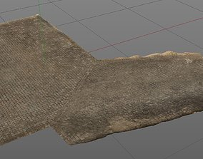 3D Scanned Pavement and driveway