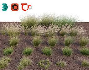 3D Eskdale grass