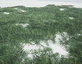 3D asset Grass Forest