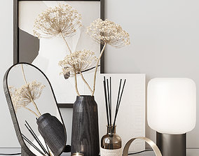 Decor set with heracleum 3D