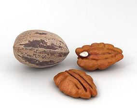 3D model Pecan Nuts