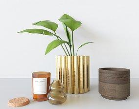 3D Decorationset Plant