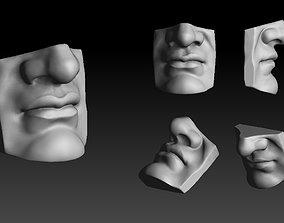 3D print model David - Mouth Reproduction