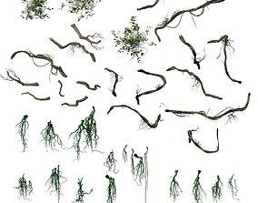 3D Suburb - Huanglongshan broken bridge vines