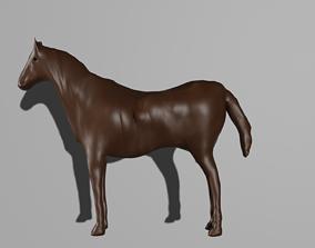 Horse 3D asset realtime