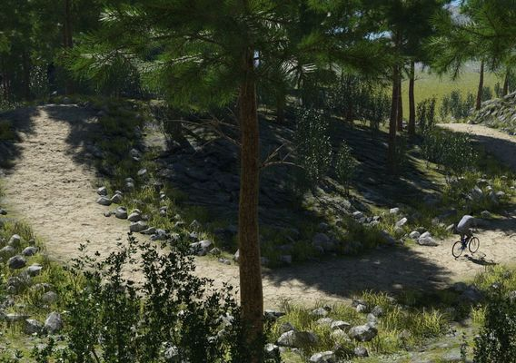 rough path in Terragen