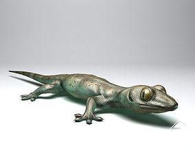 Gecko 3D asset