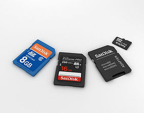 SD Cards Set 3D model
