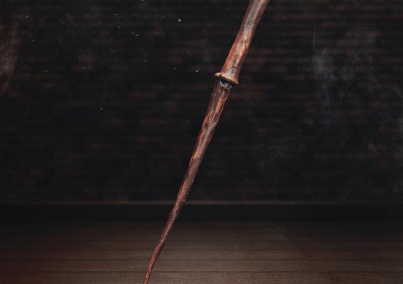 Pottermore Wand 2