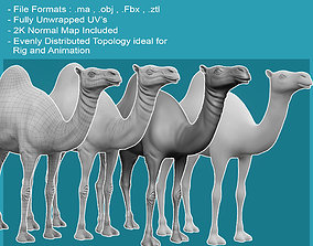 VR / AR ready 3D Camel Model