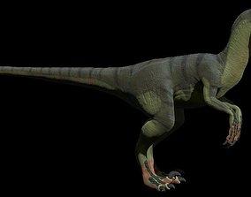 Rigged Deinonychus 3D asset