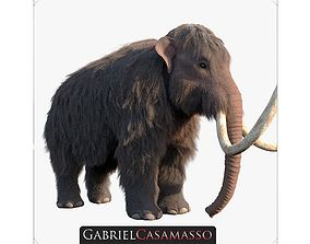 3D Woolly Mammoth - Mammuthus primigenius
