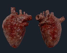 Heart Human Organ Game Ready 05 3D asset