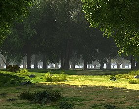 3D asset animated Forest background