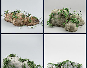 3D model Ivy and stone Collection