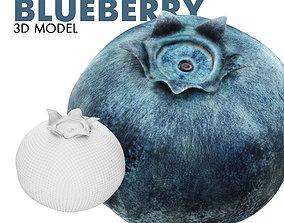 3D model Blueberry