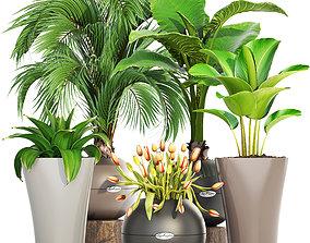 3D pot Collection plants