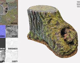 3D model Mossy Tree Stump