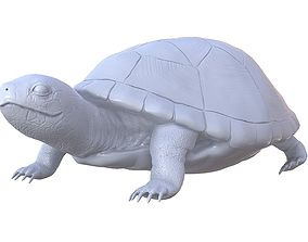 Turtle high poly model for 3D printing 3d-printing