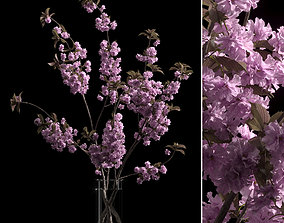 Japanese cherry branches 3D