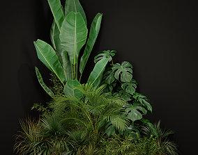 flower 3D model Plants collection 196