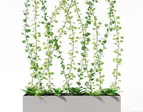 partition plant 3D