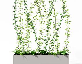 3D model partition plant