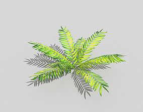 Low poly Plant tree 3D asset low-poly