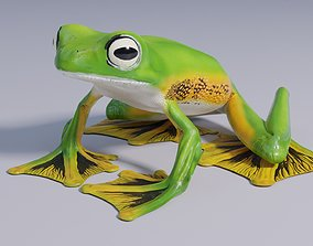 Wallaces Flying Frog - Animated 3D asset