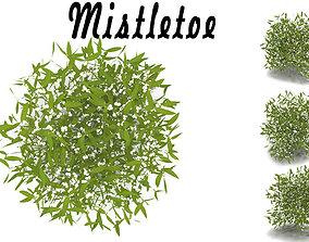 3D Mistletoe