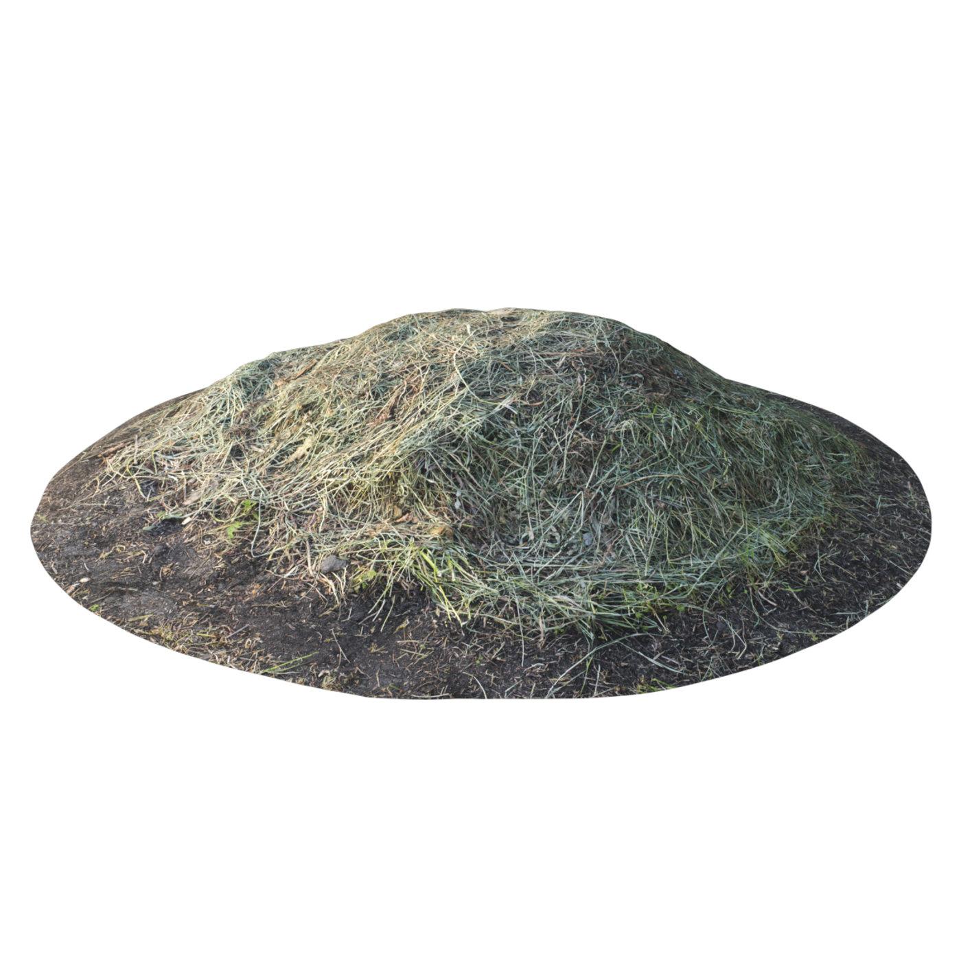 Photogrammetry of Grass