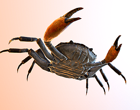 animated realtime crab 3d model