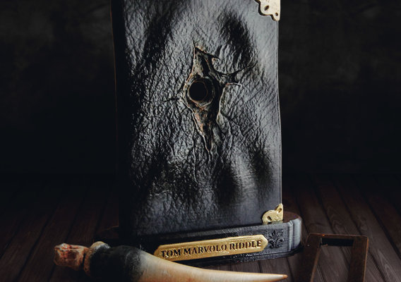Tom Riddle Diary and Basilisk Fang