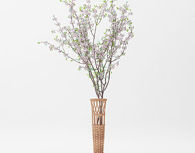 3D model Basket Vase and Sakura Flower