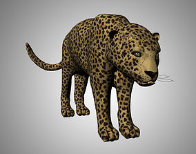 3D asset Leopard