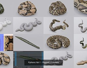 3D model Pythons Vol 1 - Rigged