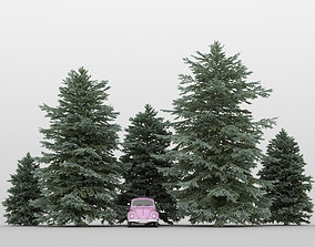 Fir Tree Pack 01 garden 3D