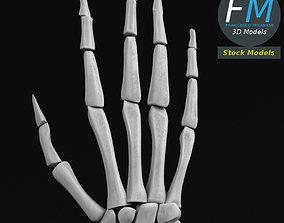Anatomy - Human hand bones 3D
