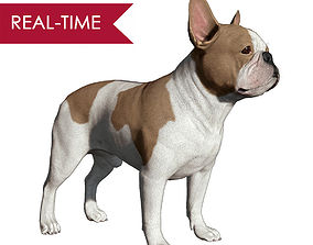 3D asset French Bulldog Real-Time