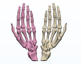 Human Hands 3d print models