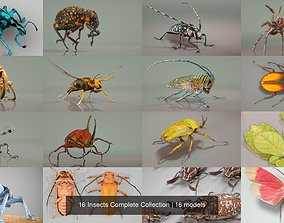 3D model 16 Insects Complete Collection butterfly