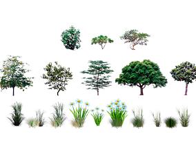 3D model VR / AR ready LOWPOLY PLANTS