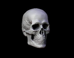 Human Skull Variations Low-poly 3D model VR / AR ready